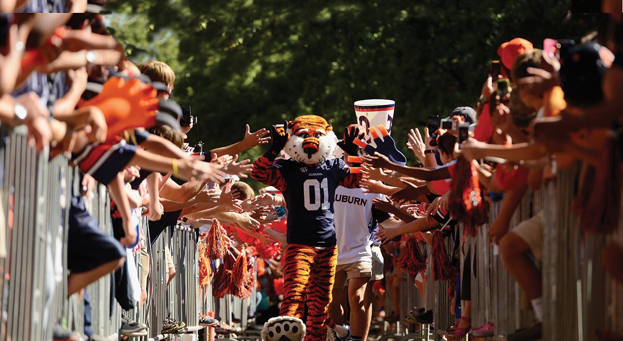 Aubie leads Tiger Walk on Saturday.Mississippi St vs Auburn on Saturday, Sept. 14 , 2013 in Auburn, Ala.Todd Van Emst